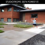 3074forestfeature1